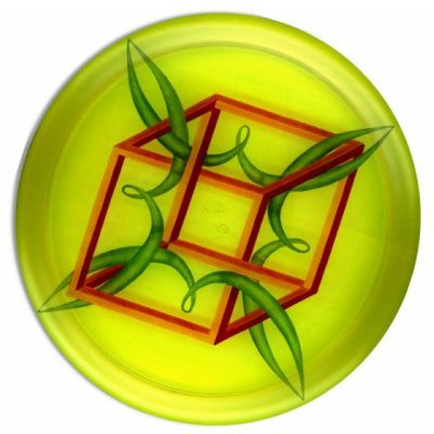 Flying disc with impossible cube
